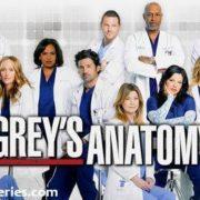 "Grey's Anatomy 11ª Temp Ep 24 ""You're My Home"""